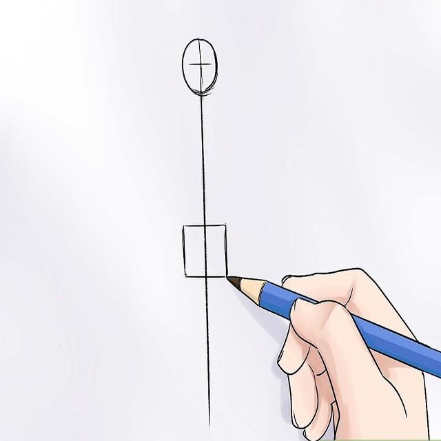 Vẽ phần khung xương chậu